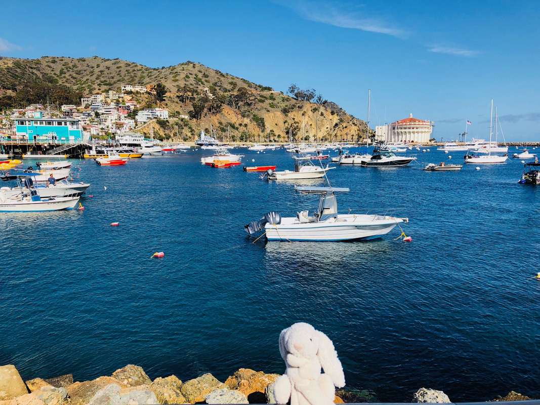 St Catalina Island, Avalon.