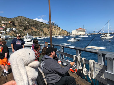 Fishing on Catalina Island