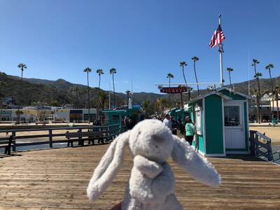Avalon Pier on Catalina Island