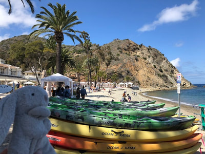 Descanso Beach on Catalina Island