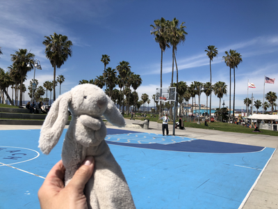 Venice Beach basketball court.