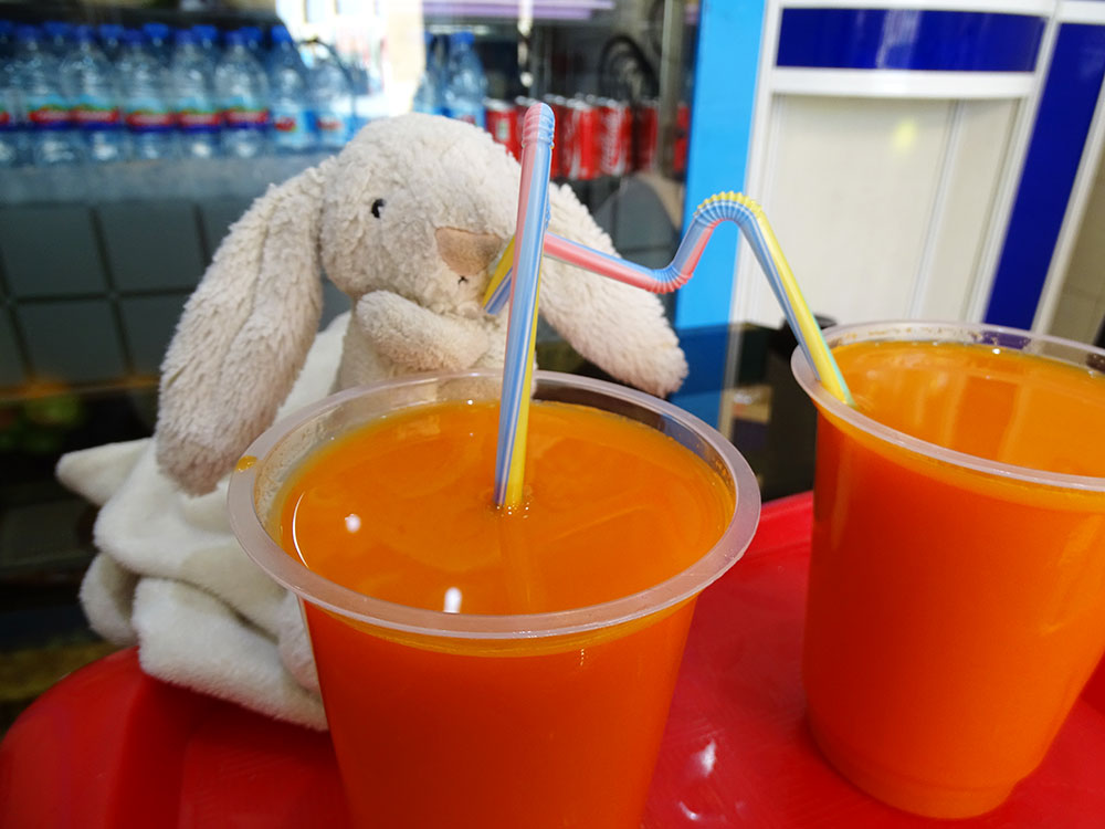 Leo's Rabbit drinking carrot juice in Yazd, Iran.
