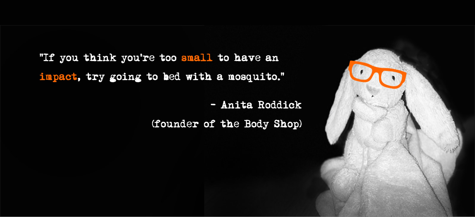 Rabbit Inspires quote from Anita Roddick.